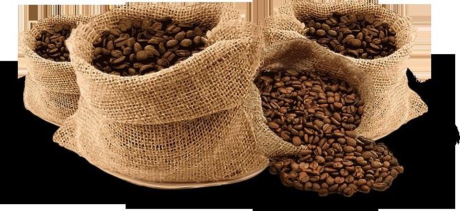 Có những loại cà phê ngon nào