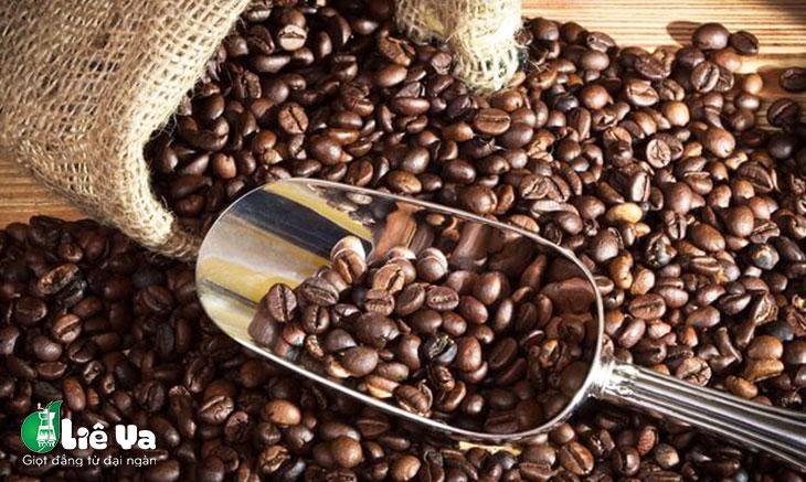 cafe catimor